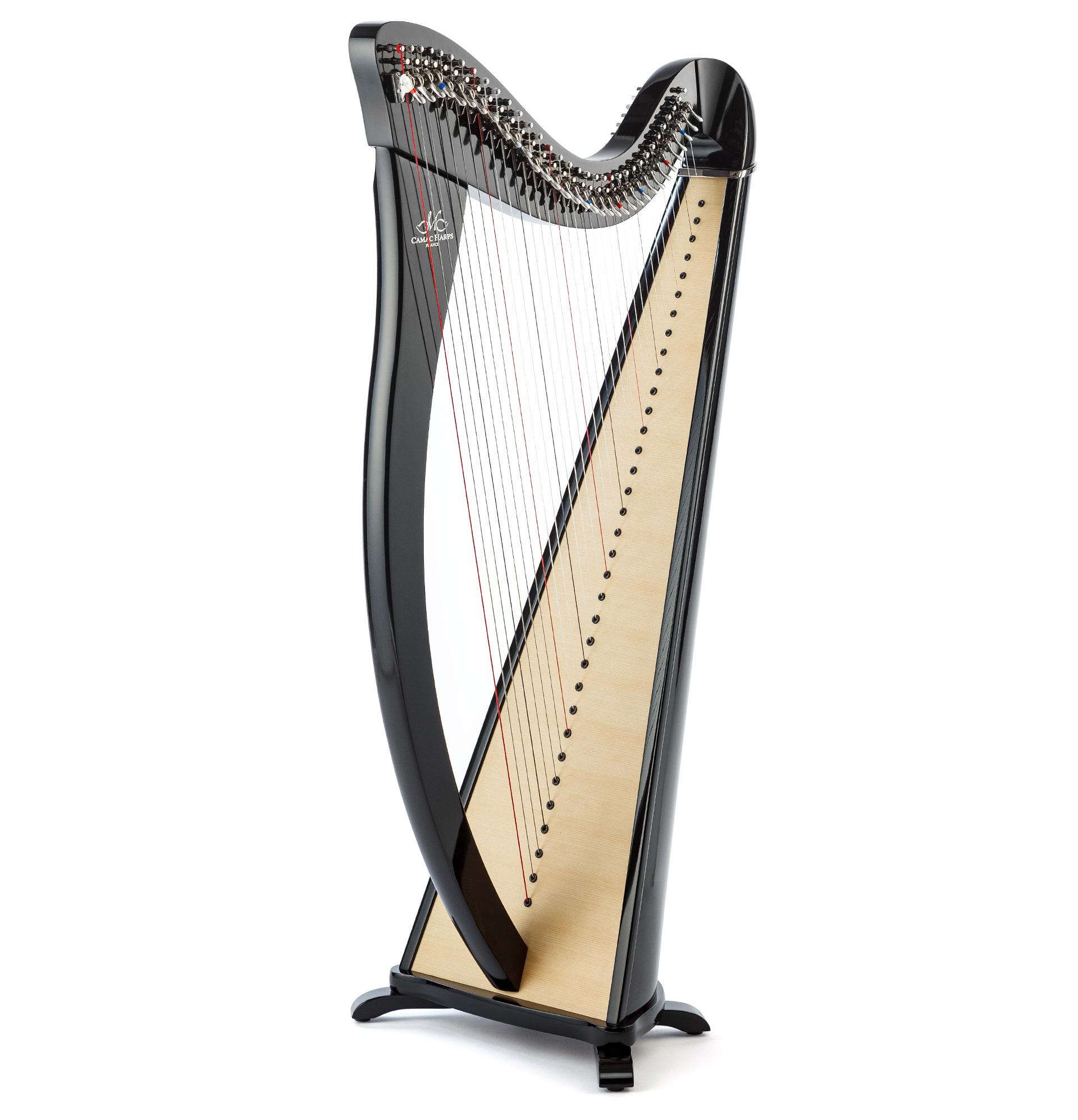Harppu: Camac Hermine, musta