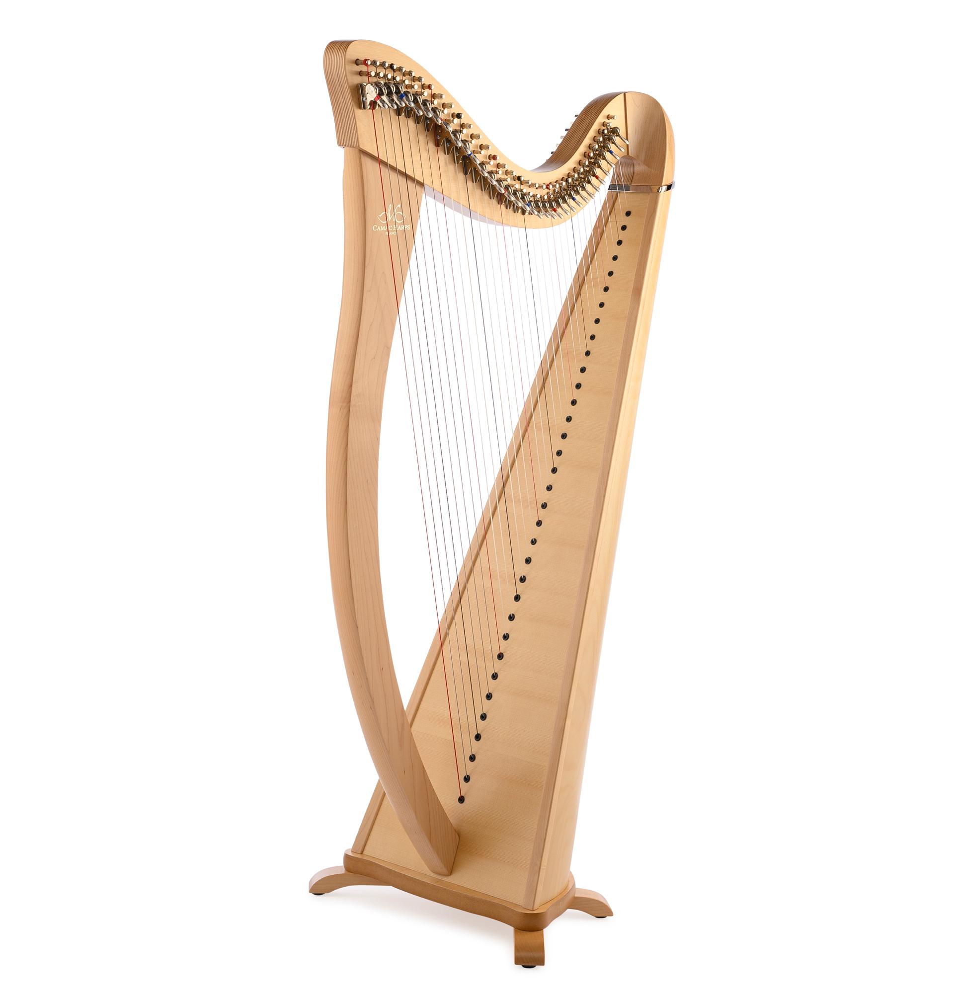 Harppu: Camac Hermine, vaahtera