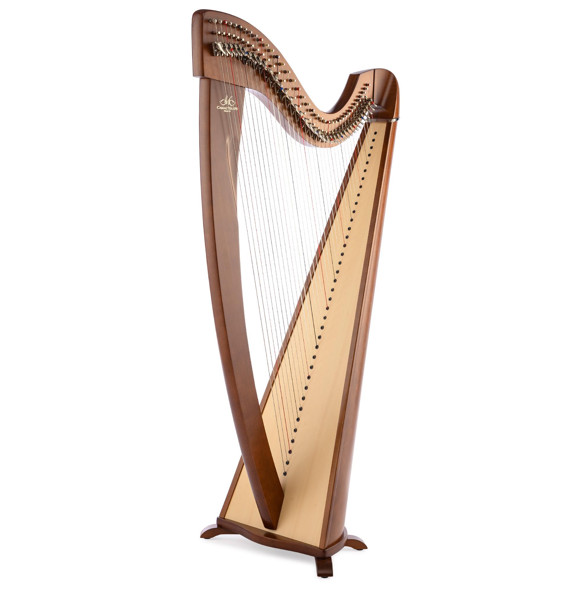 Harppu: Camac Korrigan, pähkinä