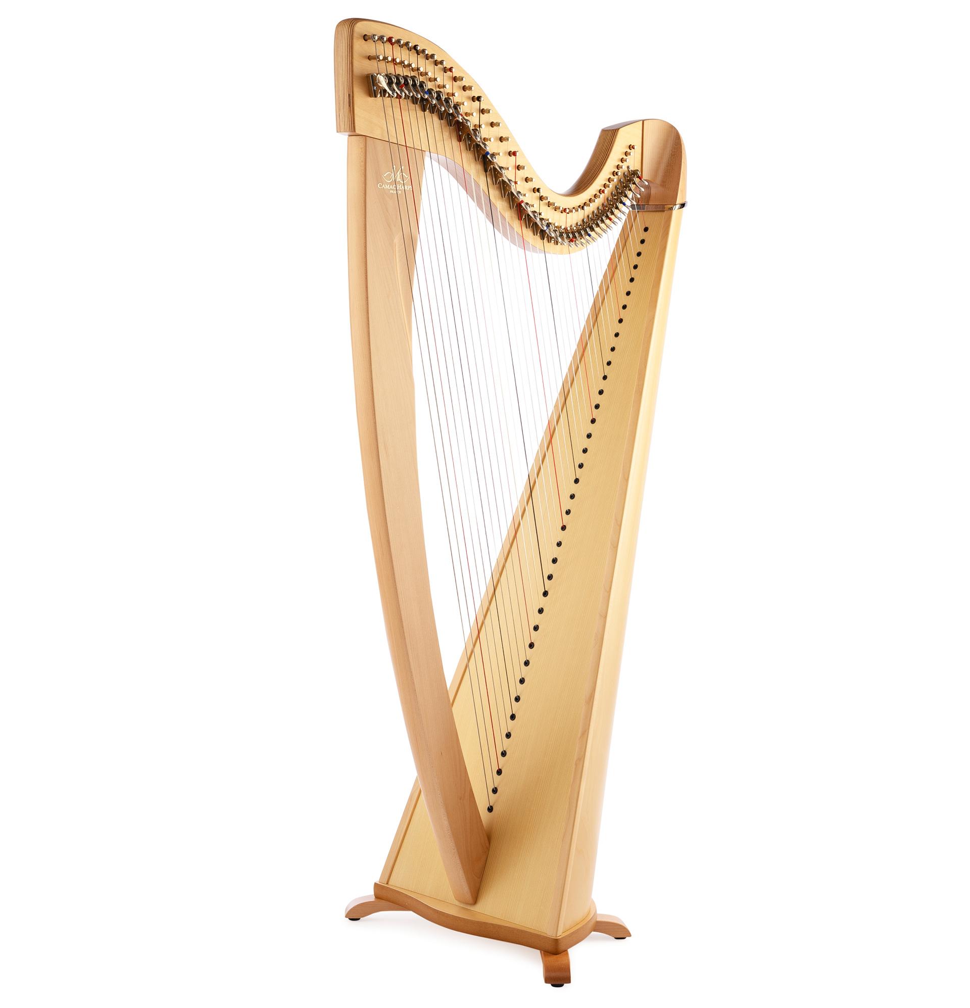 Harppu: Camac Korrigan, vaahtera