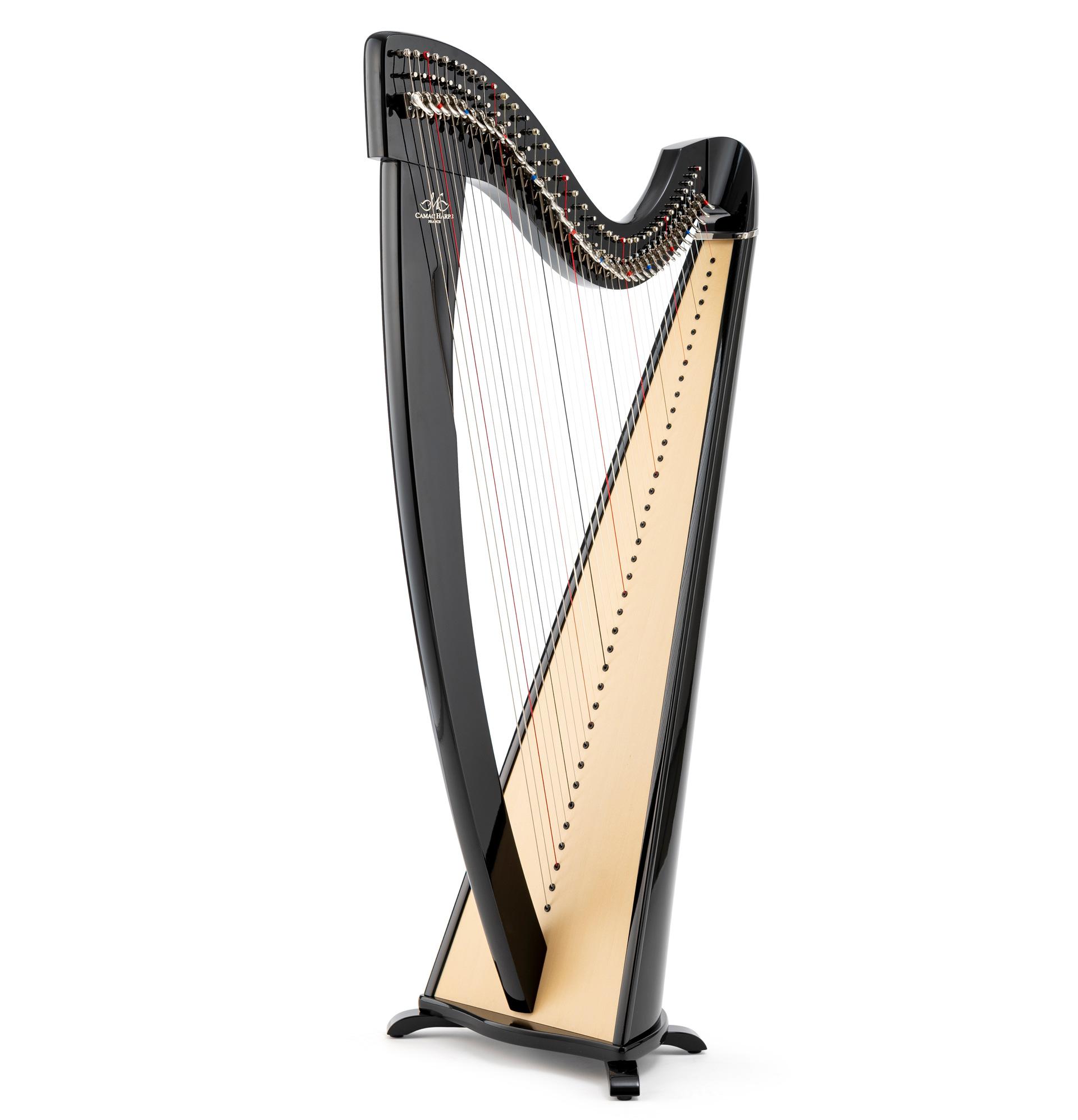 Harppu: Camac Korrigan, ebony