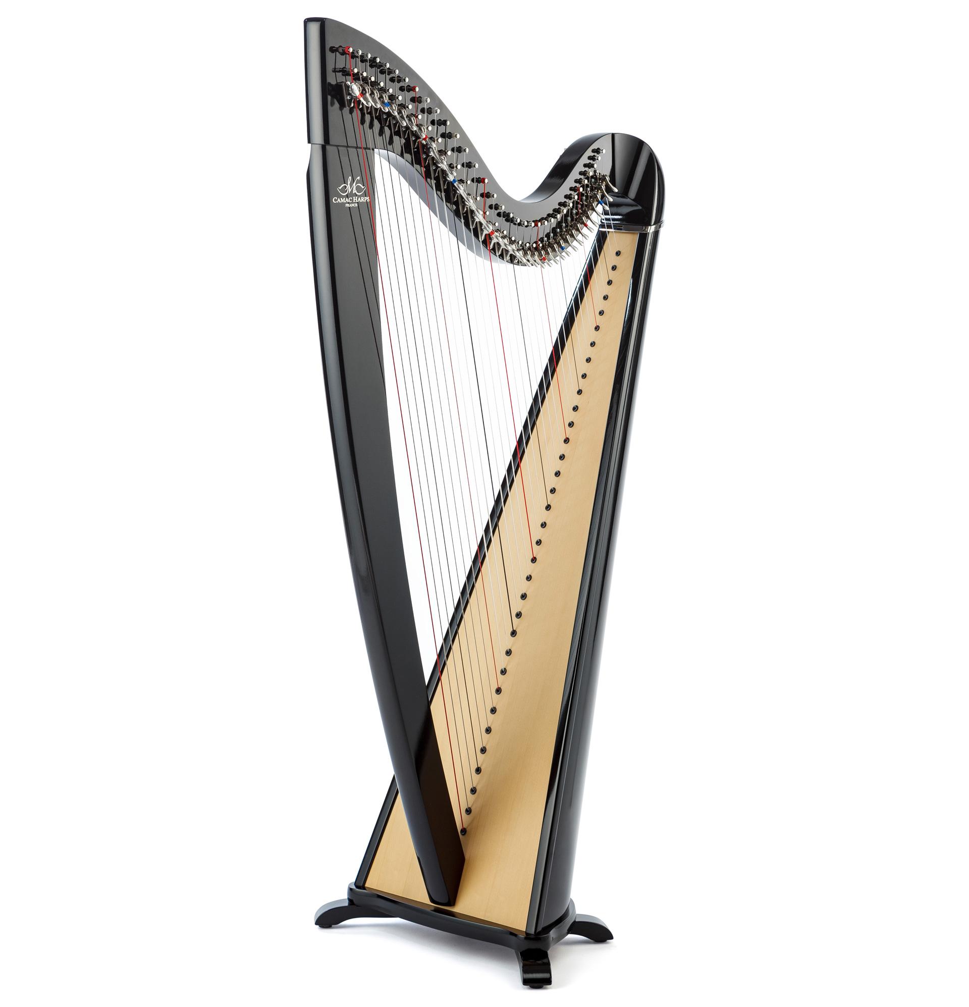 Harppu: Camac Telenn, pähkinä