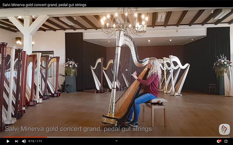 Zingende Snaar videos