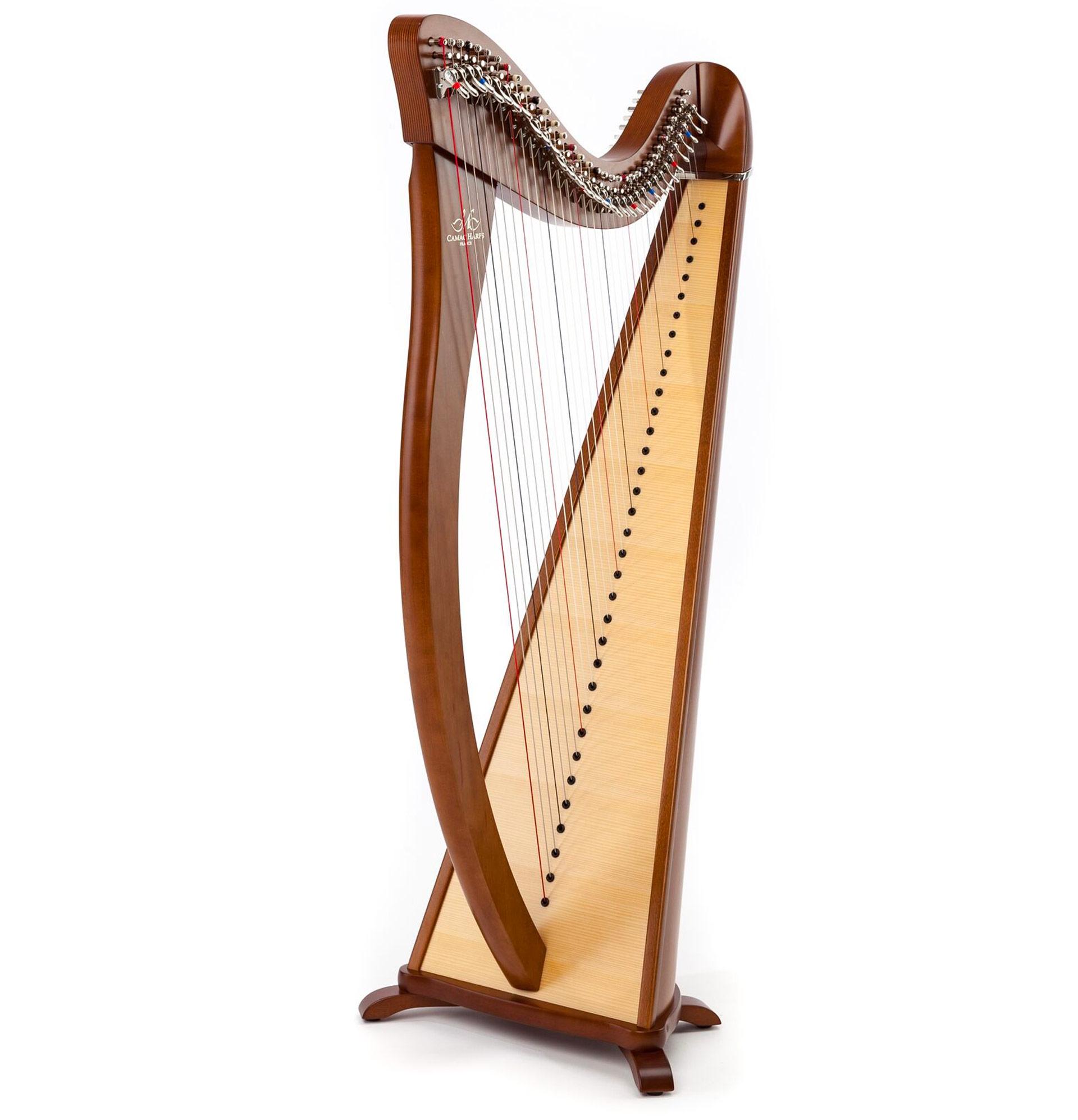Harppu: Camac Hermine, pähkinä